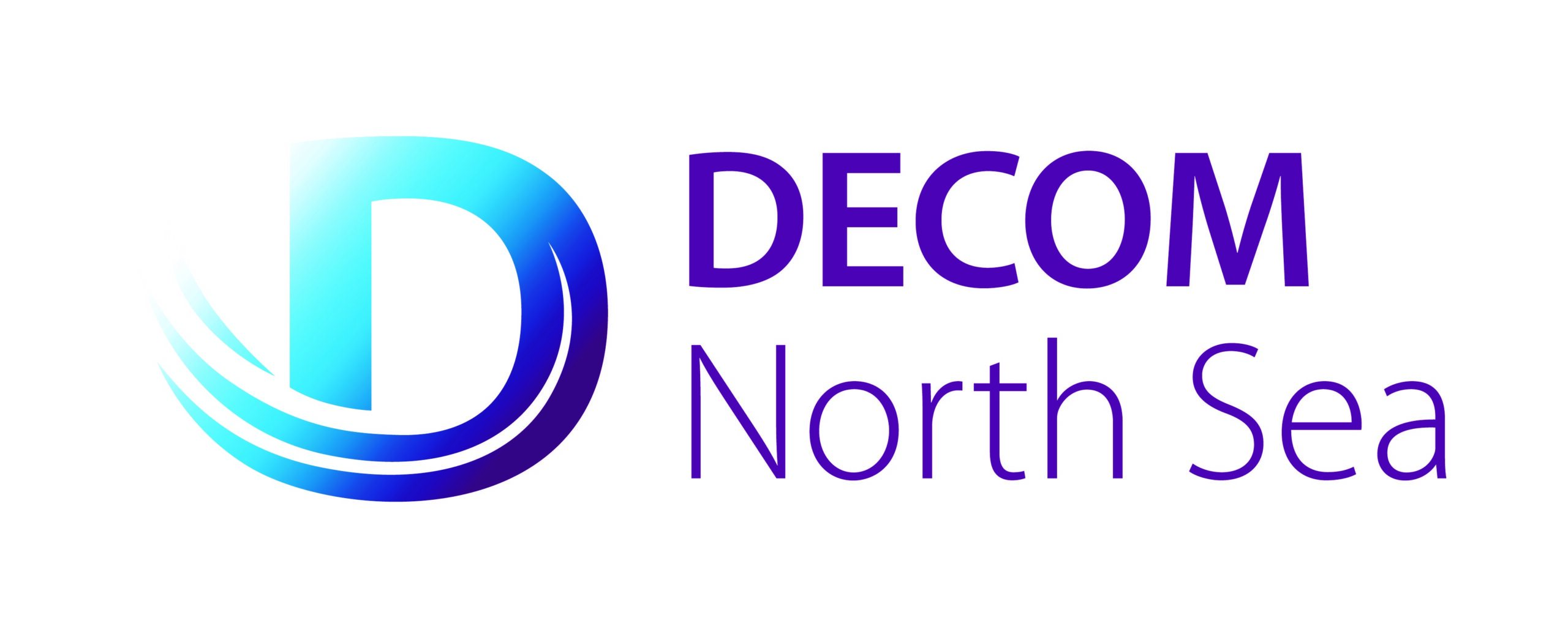 DNS logo (2)